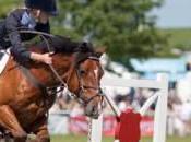 L'équitation, passion pour
