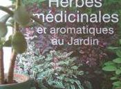 Herbes médicinales aromatiques jardin