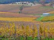 puissance l'industrie viticole Australie…