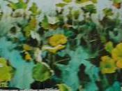 L'Art l'Aquarelle petit sommaire quelques réflexions glanées dans