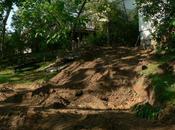 Embellir Jardin