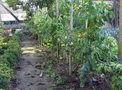 Dans jardins d'Épicure