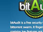 BitAudit, Second Hadopi