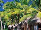 Polynésie bungalow pilotis