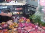 Marché floral Paulo, Brésil