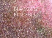 Blackbird Blackbird: Hawaii (Sunvisor Remix) Quand aime...