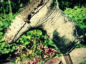 Retouche ligne pixlr.com, pratique vintage garanti