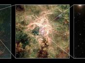 Découverte plus grosse étoile l'Univers