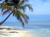Gîte France n°6241, pire séjour Guadeloupe