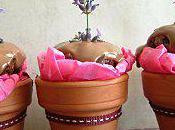 Cupcakes Chocolat Lavande Petits Pots Fleurs