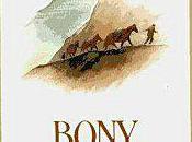 Bony kelly gang