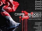 CRIPS BLOODS AMERICA documentaire choc