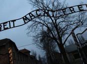 Découverte d'un ensemble d'instruments chirurgicaux d'Auschwitz