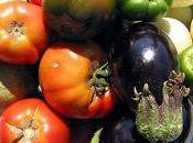 plein légumes