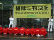 Trafic viande baleine l'approche verdict, participez marche virtuelle pour Tokyo