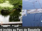 Ecoradeaux Parc Bagatelle
