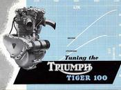Tuning Triumph Tiger