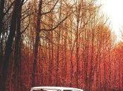 Yann Tiersen Ashes