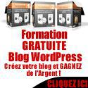 Blog WordPress comment combiner passion affaire rentable…