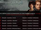 Breaking Dawn choisissez titres français