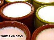 Yaourts lait soja tres rapides sans yaourtiere marmites emoi