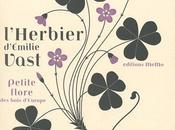 l'Herbier d'Emilie Vast graphique intemporel