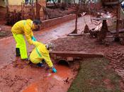 Marée rouge Hongrie gouvernement dissimulé concentrations élevées d'arsenic mercure