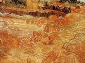 Exposition Gogh Rome