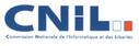 fichier occulte peut cacher autres illégaux (CNIL, octobre 2010, rapport préliminaire contrôles gendarmerie nationale)