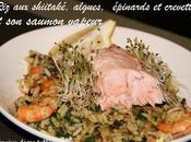 shiitaké, algues, épinards crevettes