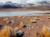 Soirées Club Reporters Beausoleil: Voyages terres chiliennes