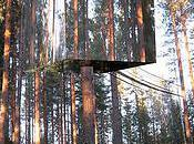 Treehotel [Flickr]
