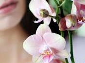 L'orchidée moi… Émoi
