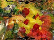Retouche l'automne (Daniel Boulanger)