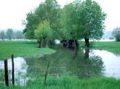 Faut-il construire zones inondables franciliennes