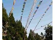 Petit trip jours Darjeeling Sikkim SIKKIM