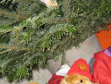 Cher petit Papa Noël