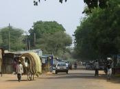 Dans Niger affligé, Monsieur Poulet n'a plus coeur rire…