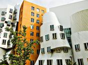Stata Center dans Massachusetts, imposant ouvrage Frank Gehry