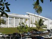 présidente l'université Polynésie a-t-elle plagié Umberto