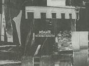 Vrac Desolate Leaf Library G-Side