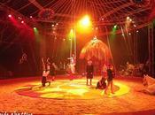 NoNo font leur cirque Antony (92)