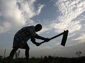 grande désillusion microfinance