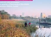 système collecte déchets aspiration magazine Ecologik