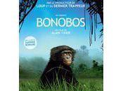 sauvait aussi Bonobos