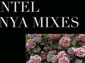 "DNTEL: Enya Remixes Free ""All mixes DNTEL with..."