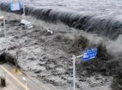 Internet survécu catastrophe Japon