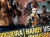 Fight Night Nogueira Davis