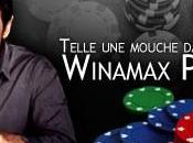 Winamax ZEturf, tête jeux ligne
