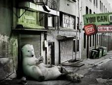 Stratégie publicitaire multi-canal pour sauver ours polaires